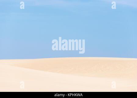Stati Uniti, California, Oceano Dune SVRA (stato veicolare Area ricreativa) Oso Flaco parco dello stato Foto Stock
