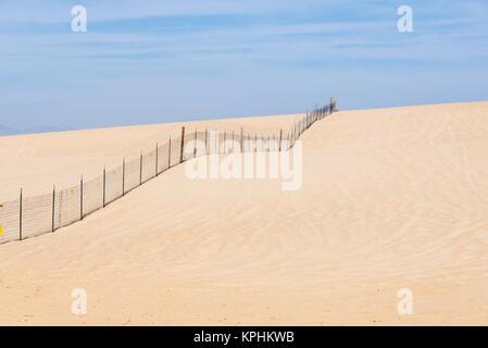 Stati Uniti, California, Oso Flaco parco statale, parte dell Oceano Dune SVRA (Stato Vehicular Recreation Area) Foto Stock