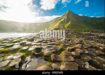 Il Selciato del gigante all alba di un giorno di sole con le famose colonne di basalto, il risultato di una antica Foto Stock