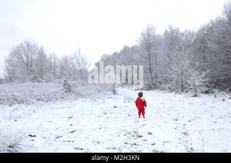 Due-anno-vecchio Felix Cox, esamina gli alberi innevati in Hargate foresta in Tunbridge Wells, Kent dopo la neve Foto Stock