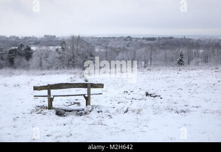 Hargate foresta in Tunbridge Wells, Kent dopo la neve è scesa per tutta la notte. Foto Stock