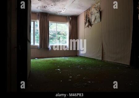 Vista dalla porta in camera con il nero della muffa sul soffitto e Moss sul pavimento in un edificio abbandonato Foto Stock