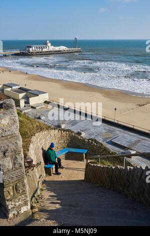 Cane a camminare in Bournemouth Beach Foto Stock