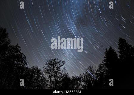 Startrails su boschi in una fredda notte invernale con Via Lattea risplende attraverso. Foto Stock
