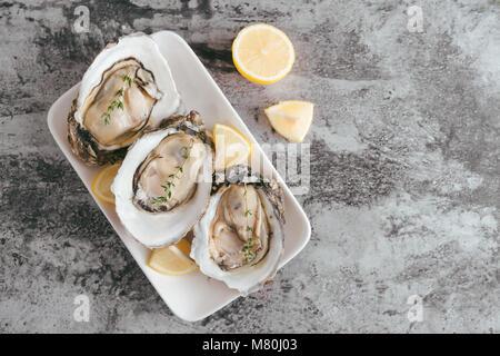 Aprire le ostriche, limone su grigio tavolo di pietra. Mezza dozzina. Con spazio di copia Foto Stock