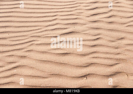 Oceano Dunes State Vehicular Recreation Area in California Foto Stock