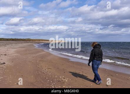 Una donna che cammina lungo la spiaggia Easthaven in Angus, su un molto ventoso e fresco giorno di aprile. Foto Stock