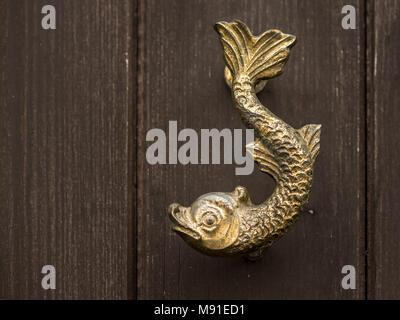 Shiny maniglia della porta di bronzo forma di pesce su un giardino in legno porta Foto Stock