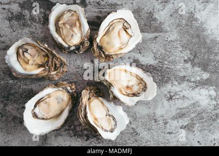 Aprire le ostriche in metallo nero sfondo rustico Foto Stock