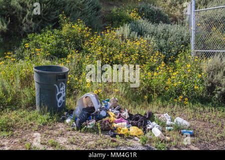 Nel cestino e cestino in zone umide Ballona, Playa Vista, Los Angeles, California Foto Stock
