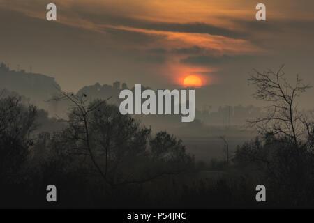 Strati di fitta nebbia che copre le zone umide Ballona al tramonto, Playa Vista, California Foto Stock