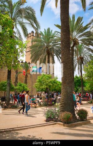 Cordoba Alcazar, vista di turisti si sono riuniti nel palmo alberata Plaza di fronte all'Alcazar de los Reyes Cristianos, Cordoba, Andalusia. Foto Stock