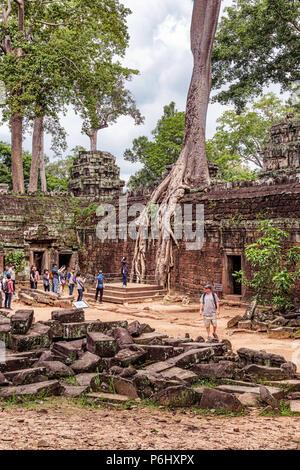 Angkor, Cambogia - Nov 17, 2017: i turisti a Ta Prohm rovine di templi ricoperta con alberi a Angkor, Cambogia, costruito alla fine del XII secolo.Si è trovato Foto Stock
