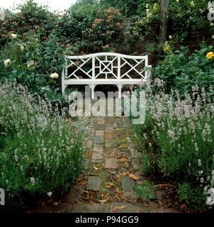 Percorso di mattoni tra di lavanda in estate murata country garden con banco di bianco Foto Stock