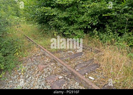Resti di binari della ferrovia nei pressi di Wenholthausen, Nord Reno-Westfalia, Germania Foto Stock
