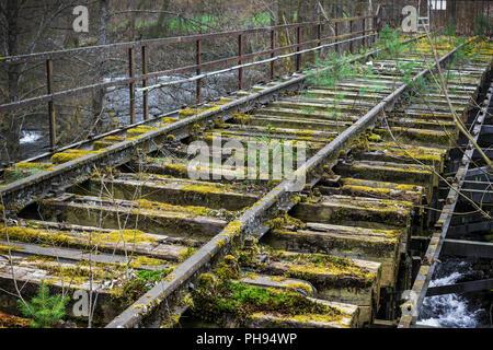 Vecchio incolto binario ferroviario, Hesse, Germania Foto Stock