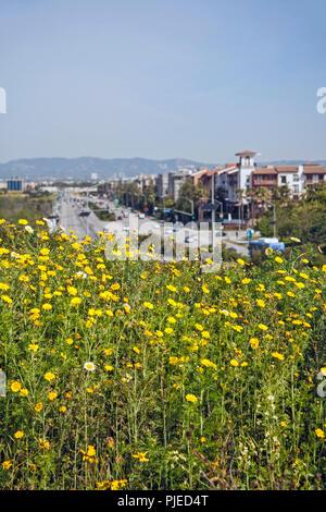 Ballona zone umide e Playa Vista sviluppo, Los Angeles, California Foto Stock