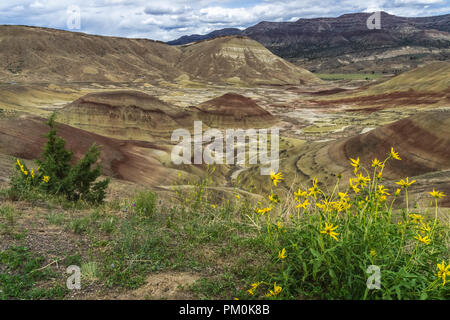 Dipinto paesaggio delle colline, John Day Fossil Beds National Monument, Mitchell, Central Oregon, Stati Uniti d'America. Foto Stock
