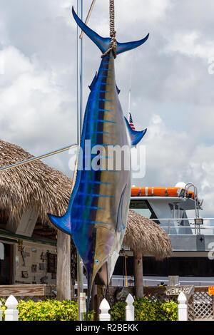 Replica di un Atlantic blue marlin pesce (Makaira nigricans) - Dania Beach, Florida, Stati Uniti d'America Foto Stock