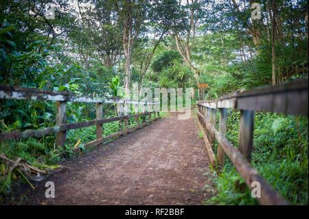 La Cresta Kuilau Trail esplora Kauai la scenografica montagnoso entroterra nelle Hawaii, Stati Uniti. Foto Stock