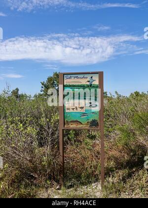 Segno con descrizioni di pesci e animali, bordo della Palude Salata, con cielo blu e nuvole wispy, Parco Statale, Cedar Key, Florida, Stati Uniti d'America. Foto Stock