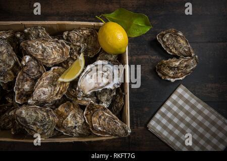 Materie ostriche con il limone sul pannello di legno e una bottiglia di vino e vetro, Francia. Foto Stock