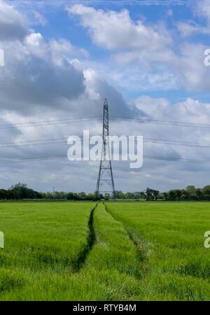 Le tracce in un campo che conduce ad un traliccio di elettricità Foto Stock