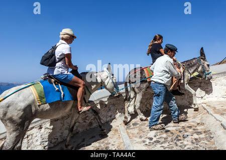 Santorini Grecia turismo, le persone, i turisti vanno fino a Thira, asino conducente aiuta a cavalcare alla collina, Europa Foto Stock