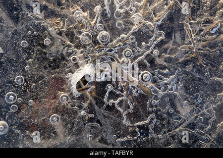 Abstract Texture di sfondo closeup ghiaccio con scanalature, solchi, e bolle di aria cought dal gelo della massa di acqua mentre il congelamento Foto Stock