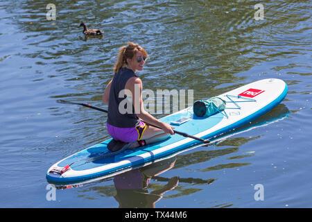 Donna paddleboarder paddle boarder inginocchiati rilassante sulla pala paddleboard scheda su Dorset Dinghy giorno al fiume Stour, Iford, Dorset Regno Unito nel mese di giugno Foto Stock