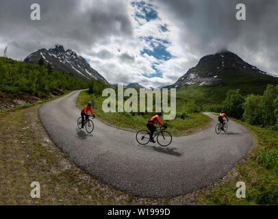 Ciclista femmina privato sulla strada a pedaggio attraverso Vengedalen, vicino ad Andalsnes, Norvegia. Foto Stock