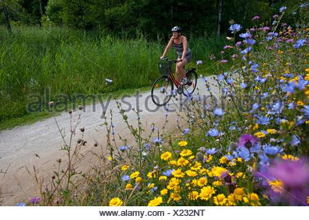 Ciclista femmina sulla strada del paese in estate paesaggio con fiori in primo piano Foto Stock