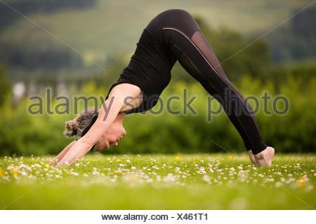 Donna matura la pratica dello yoga cane verso il basso nel campo Foto Stock