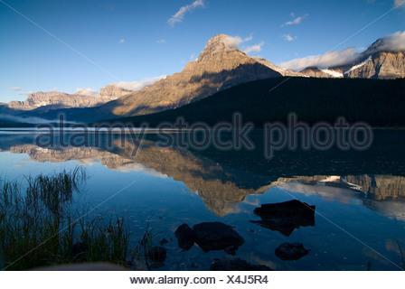 Mattina la riflessione del monte chephren in basso lago di uccelli acquatici, waputik montagne, il parco nazionale di Banff, Alberta, Canada Foto Stock