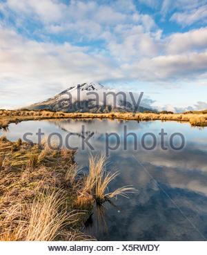 La riflessione in Pouakai Tarn, uno stratovulcano Mount Taranaki o Mount Egmont, Egmont National Park, Taranaki, Nuova Zelanda Foto Stock