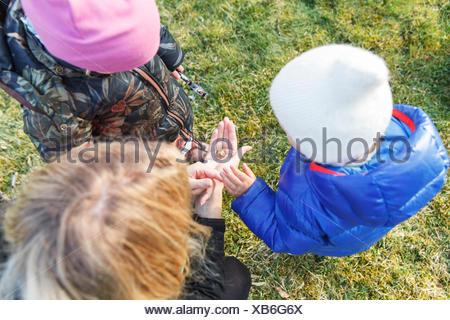 La Svezia Sodermanland, Jarna, ragazzo (12-17 mesi) e la ragazza (2-3) giocando con la madre Foto Stock