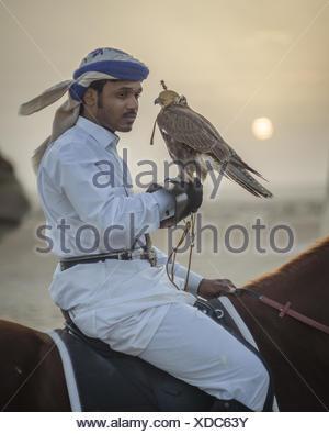 Un cacciatore montato a cavallo con la sua falcon all'alba durante il Galayel al Festival di caccia in Qatar. La manifestazione annuale fosse di squadre di cacciatori uno contro l'altro utilizzando arabi tradizionali tecniche di caccia. Foto Stock