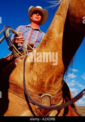 Stati Uniti d'America. Uomo di stock di equitazione. Foto Stock