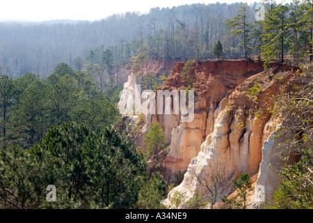 La Georgia s poco Grand Canyon nella Provvidenza Canyon State Park nel Sud Georgia USA