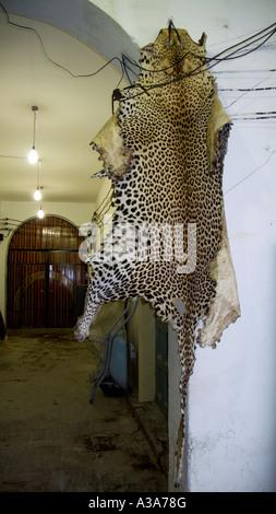 A pelle di leopardo al souk turistiche Tripoli in Libia Foto Stock