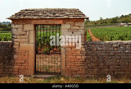 Le Grand Montrachet Domaine Jacques Prieur, Duverget, Taboureau. Un cancello di ferro e il muro di pietra.