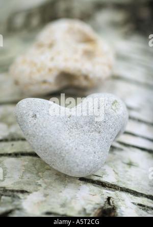 A forma di cuore ad pietre sulla corteccia sfondo, extreme close-up Foto Stock