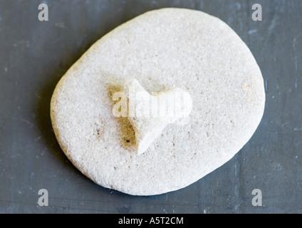 A forma di cuore ad pietra su pietra rotonda Foto Stock