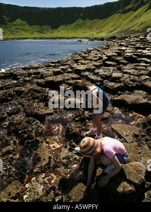 Giant's Causeway, Co. Antrim, Irlanda del Nord