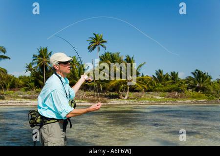 BELIZE Ambergris Caye maschi adulti per la pesca con la mosca in appartamenti lungo il litorale per bonefish guadare Foto Stock