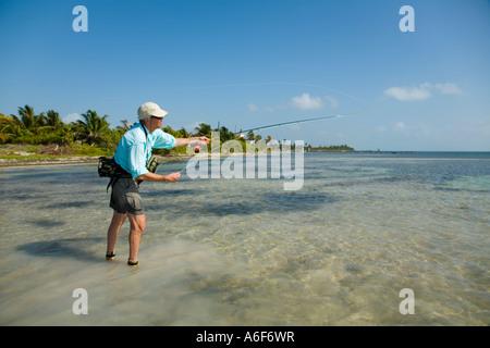 BELIZE Ambergris Caye maschi adulti per la pesca con la mosca in appartamenti lungo il litorale per bonefish cast Foto Stock