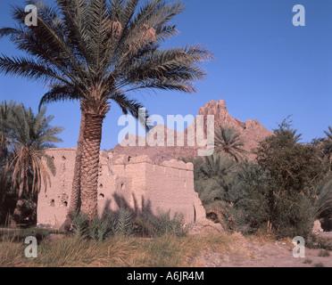 Nizwa Fort rovine e montagne, Nizwa, Ad Dakhiliyah regione, il sultanato di Oman Foto Stock