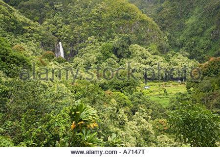 Abbassare Waikani scende nella valle di Wailua sul modo di Hana sull'isola di Maui nello stato delle Hawaii USA Foto Stock