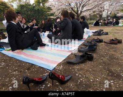Pic-nic sotto la fioritura dei ciliegi a Tokyo Giappone Foto Stock