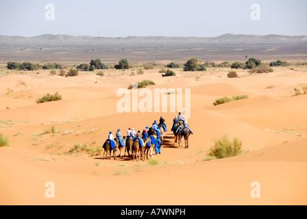 Gruppo di turisti passeggiate sui cammelli attraverso sanddunes Erg Chebbi Merzouga Marocco Foto Stock